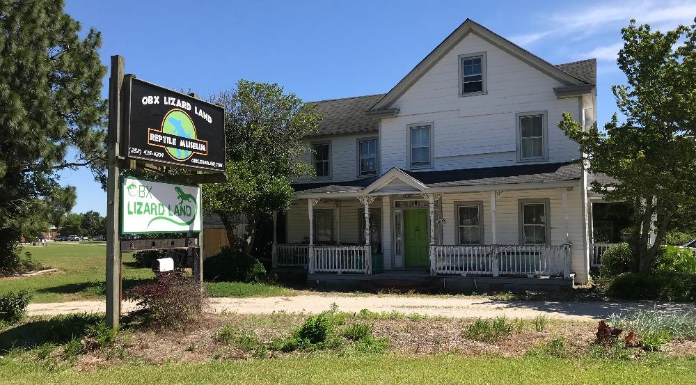 OBX Lizard Land Currituck County NC Caratoke location